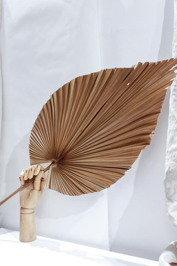 exotischer palmwedel in beige