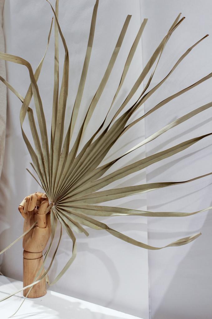 Palmenblatt in naturfarben